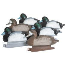 Banded Bluebill Floating Duck Decoys - 6-Pack in See Photo - Closeouts