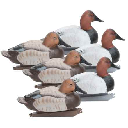 Banded Canvasback Floating Duck Decoys - 6-Pack in See Photo - Closeouts