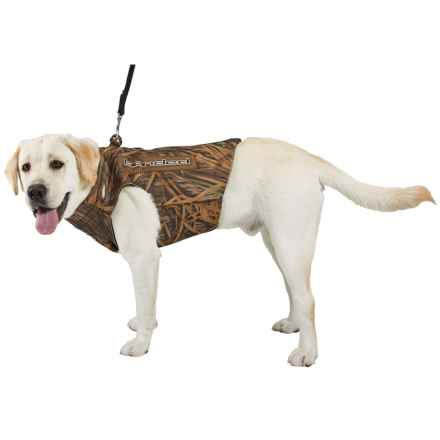 Banded Dog Parka - 5mm Neoprene in Shadow Grass - Closeouts