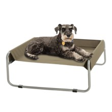 "BeGood Insect Shield® Pet Cot - Medium, 27x23"" in Green - Closeouts"
