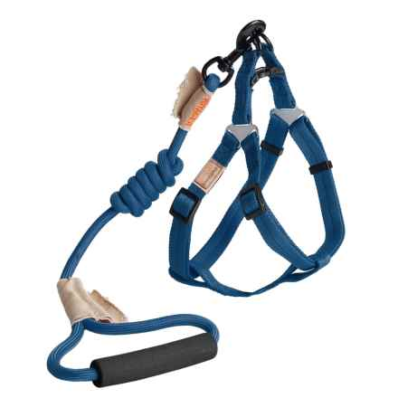 Best Pet Rope Leash and Harness Set - Medium in Blue - Closeouts