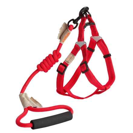 Best Pet Rope Leash and Harness Set - Medium in Red - Closeouts