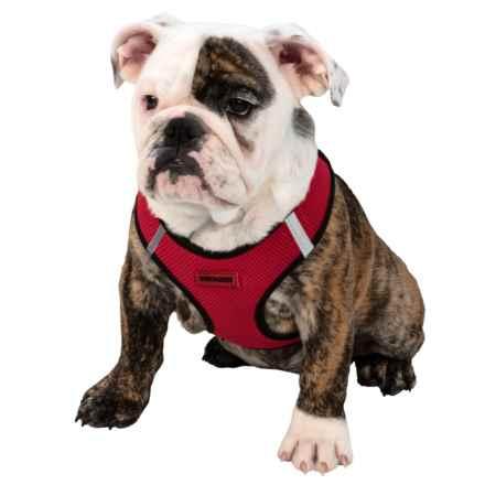 Best Pet Step-In Dog Harness in Red/Black Trim - Closeouts