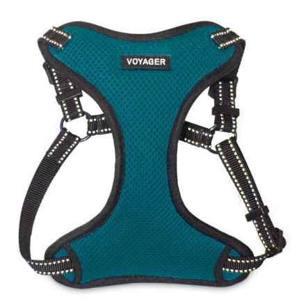 Best Pet Voyager Step-In Harness - 3M Scotchlite® in Turquoise - Closeouts