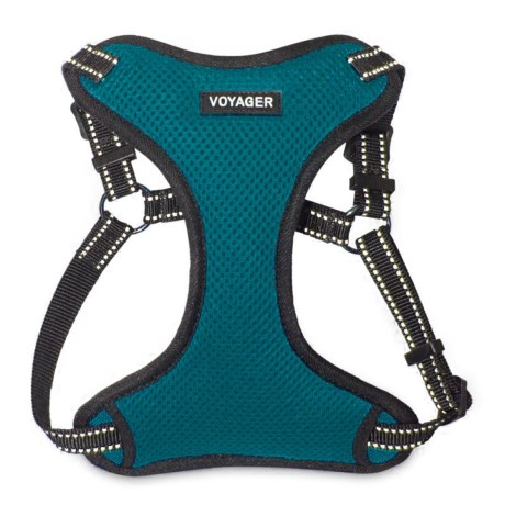 Best Pet Voyager Step-In Harness - 3M Scotchlite® in Turquoise
