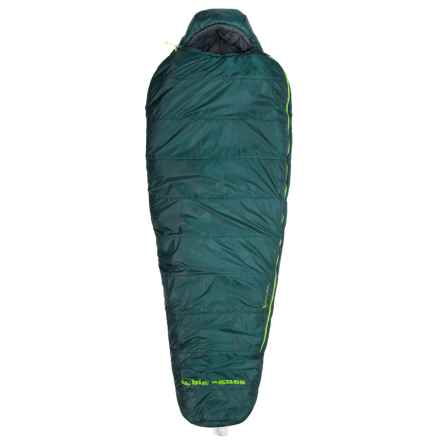 Big Agnes 0°F Benchmark Sleeping Bag - Mummy in Green - Closeouts