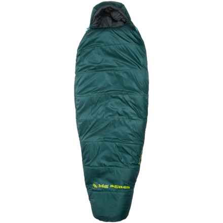 Big Agnes 0°F Benchmark Sleeping Bag - Petite in Green - Closeouts
