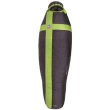 Big Agnes 0°F Pomer Hoit SL Sleeping Bag - 800 Fill Power, Long Mummy in Black/Green - Closeouts