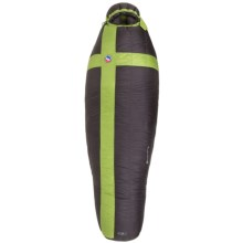 Big Agnes 0°F Pomer Hoit SL Sleeping Bag - 800 Fill Power, Mummy in Black/Green - Closeouts