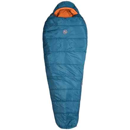 Big Agnes 20°F Whalen Sleeping Bag - Mummy, Long in Blue - Closeouts