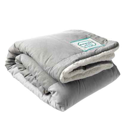 """Big & Awesome All I Need Pet Throw Blanket - 50x60"""" in Grey - Closeouts"""