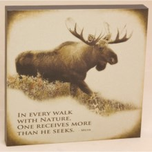 "Big Sky Carvers Moose ""Every Walk"" Wall Art - 12x12"" in Moose - Closeouts"