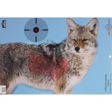 Birchwood Casey Pregame Coyote Targets -3-Pack in See Photo - Closeouts