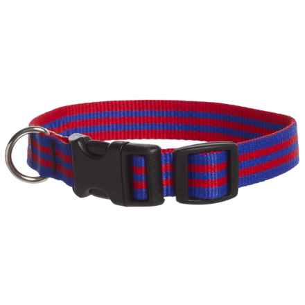 "Bison Designs 3/4"" Stripe Dog Collar in Blue/Red - Closeouts"
