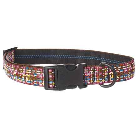 Bison Designs Chocolate Sprinkles Dog Collar in Chocolate - Closeouts