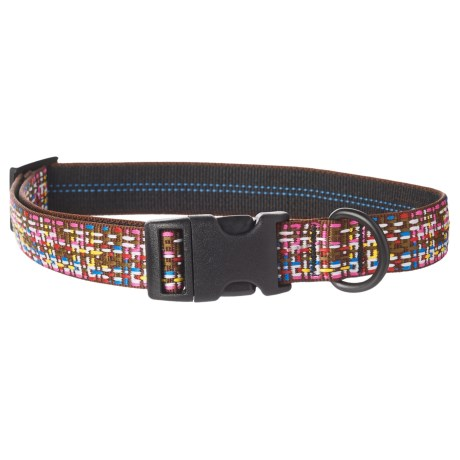 Bison Designs Chocolate Sprinkles Dog Collar in Chocolate