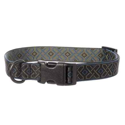 Bison Designs Dublin Dog Collar in Green - Closeouts
