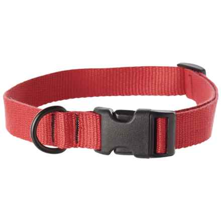 "Bison Designs Eco Web Adjustable Collar - 15-24"" in Salmon - Closeouts"