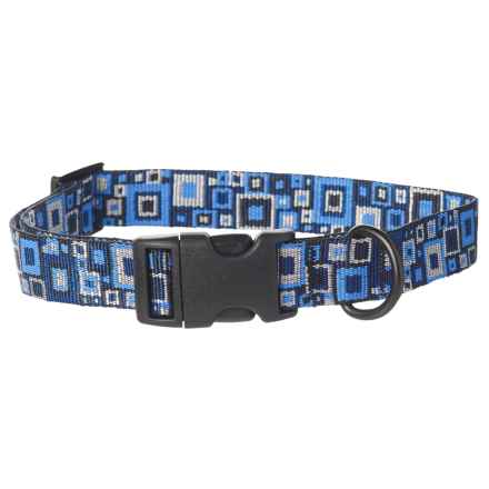 Bison Designs Framework Dog Collar in Blue - Closeouts