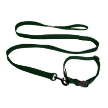 Bison Designs Solid Dog Collar and Lead Set in Green - Closeouts