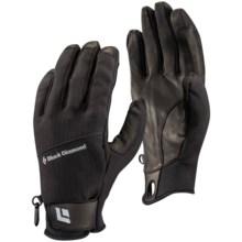 Black Diamond Equipment Pilot Gloves in Black - Closeouts