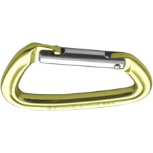 Black Diamond Equipment Positron Carabiner - Straight Gate in Gold - Closeouts