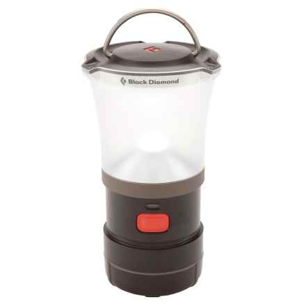 Black Diamond Equipment Titan LED Lantern - 250 Lumens in Dark Chocolate - Closeouts