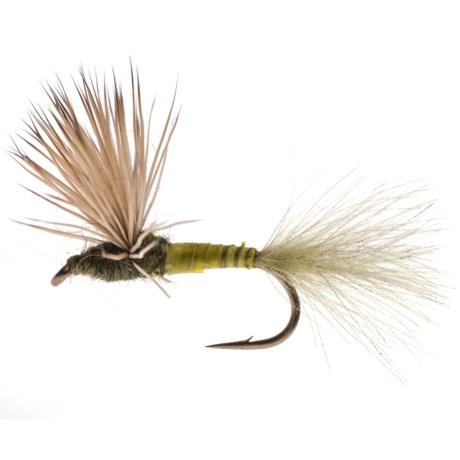 Black's Flies Biot Duck Butt Dry Fly - Dozen in Blue Winged Olive