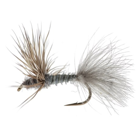 Black's Flies Biot Duck Butt Dry Fly - Dozen in Grey