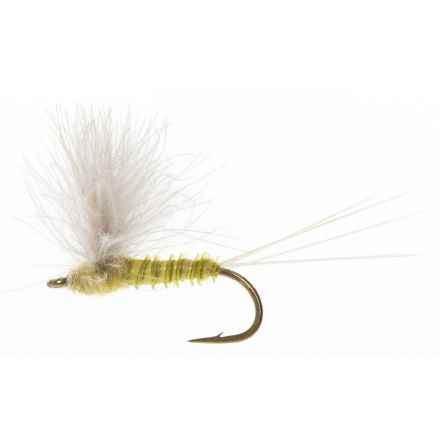 Black's Flies CDC Biot Comparadun PMD Dry Fly - Dozen in Pale Morning Dun - Closeouts