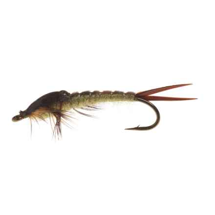 Black's Flies Epoxy Wing Case Nymph Fly - Dozen in Skwala - Closeouts
