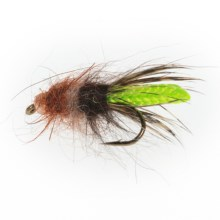 Black's Flies Gold Beadhead Peeking Caddis Nymph Fly - Dozen in See Photo - Closeouts