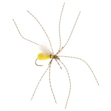 Black's Flies Super Spider Flies - Dozen in Yellow - Closeouts