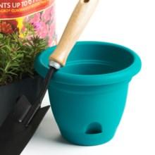 """Bloem Lucca Flower Pot - Indoor/Outdoor, 6"""" in Seastruck - Closeouts"""