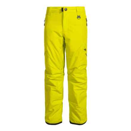 Boulder Gear Bolt Cargo Ski Pants - Insulated (For Boys) in Sulphur Springs - Closeouts