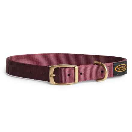 Boyt Harness Mud River Scout Dog Collar in Brown - Closeouts