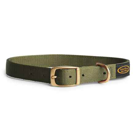 Boyt Harness Mud River Scout Dog Collar in Green - Closeouts