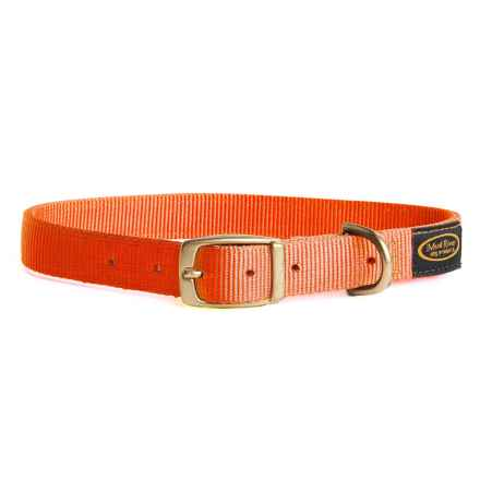 Boyt Harness Mud River Scout Dog Collar in Orange - Closeouts