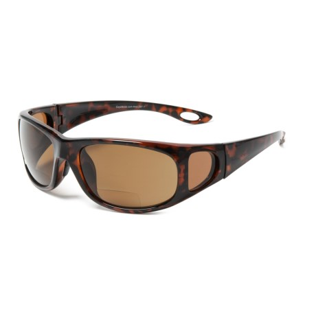 Image of BP-17 Reader Sunglasses - Polarized, Bi-Focal