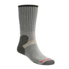 Bridgedale Cross Country Ski Socks (for Men and Women) in Grey - 2nds