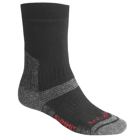 Bridgedale Endurance Summit Socks - Wool (For Men)