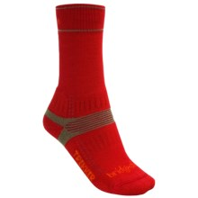 Bridgedale Hiking Socks - Wool (For Women) in Red - 2nds
