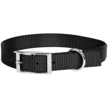 Browning Classic Standard Dog Collar in Black - Closeouts