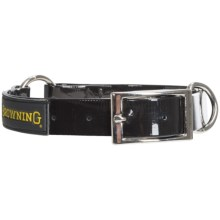 Browning Hydro-Coat Dog Collar in Black - Closeouts