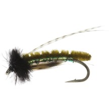 Caddis Poopah Nymph Fly - Dozen in Olive - Closeouts