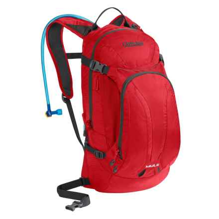 CamelBak M.U.L.E. Hydration Pack - 100 fl.oz. in Barbados Cherry - Closeouts
