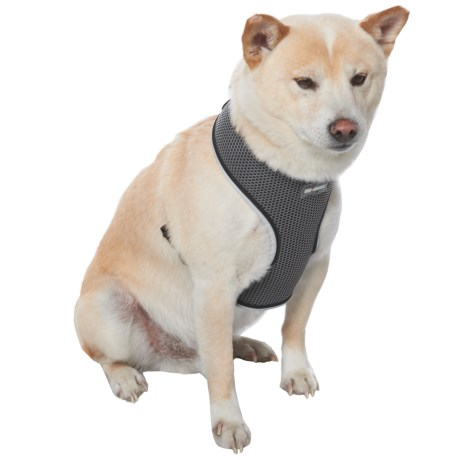 Car and Driver Reflective Dog Harness in Grey