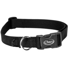 Chaco Dog Collar in Black - Closeouts