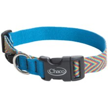 Chaco Dog Collar in Fiesta - Closeouts