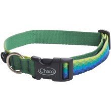 Chaco Dog Collar in Fresh Two - Closeouts